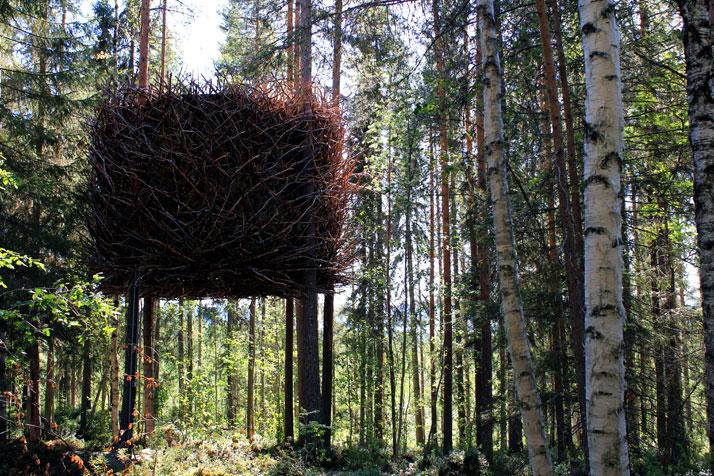 Treehotel-15