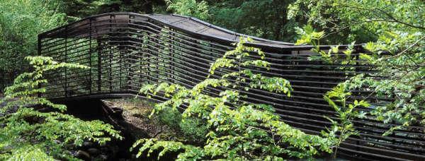 Footbridge-Crossing-L'Areuse-8