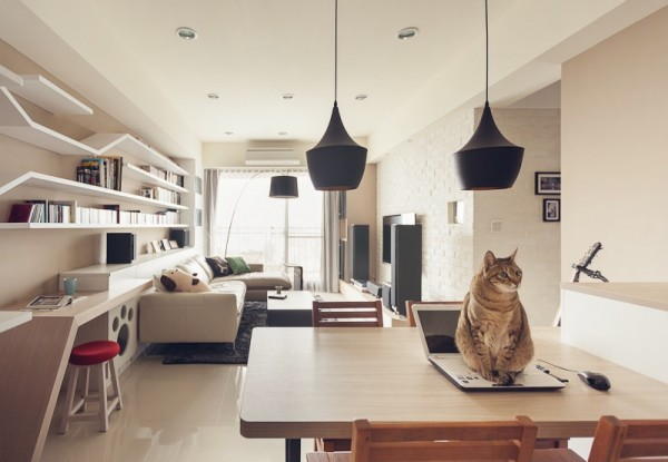 I-CHI Cat House Is A Modern Apartment With Pet Facilities