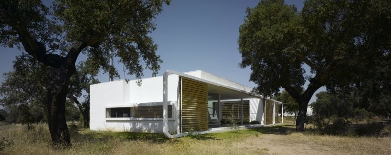 House-in-an-Oak-Grove-3