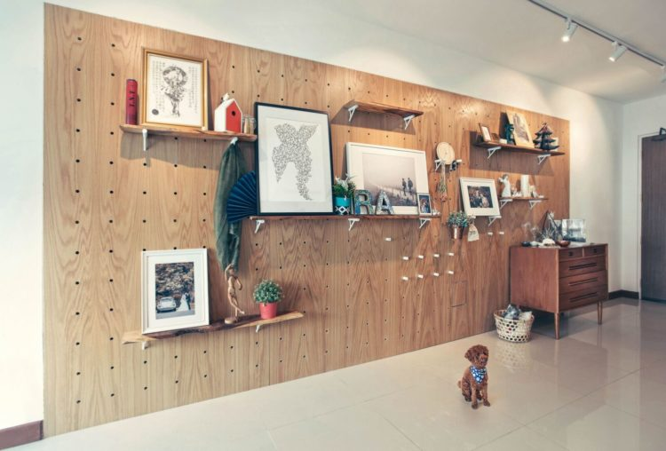 10 Types Of Drywall Alternatives For