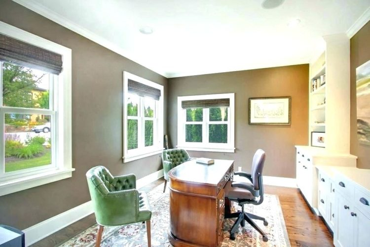 simple home office with feng shui wall colors