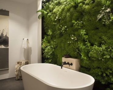 20 Beautiful Moss Wall Ideas for the Home