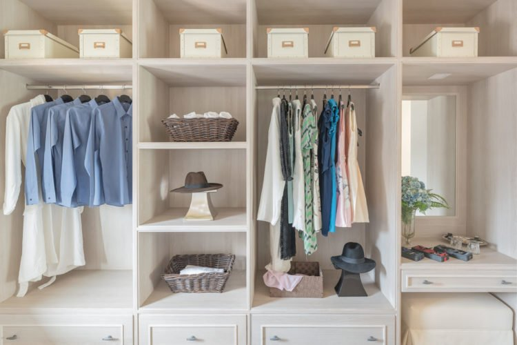 closet with built-in shelving