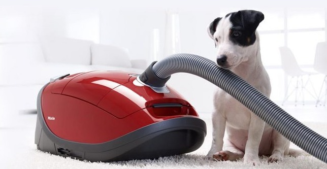 The Five Best Canister Vacuums On The Market Today