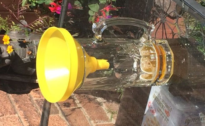 How To Make Your Very Own Wasp Trap