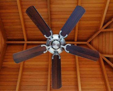 10 Different Types of Ceiling Fans to Consider