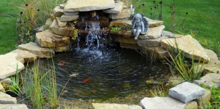 Backyard Pond Kit