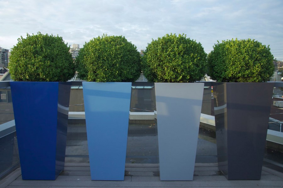 Plants For Your Backyard, Tall Potted Plants For Patio Privacy