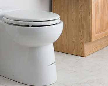 Reasons Why Your Toilet Might Be Squealing