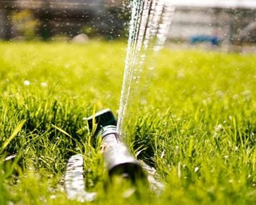 How to Locate Water Lines in Your Yard