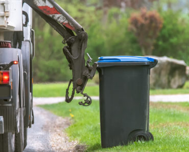 How to Get Rid Of Maggots in Outdoor Garbage Cans