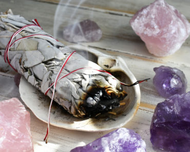 The Difference Between White Sage and Regular Sage